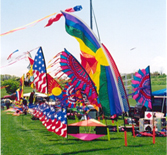 Kite Day, Bern Township