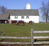 Amish Farm, Lebanon County